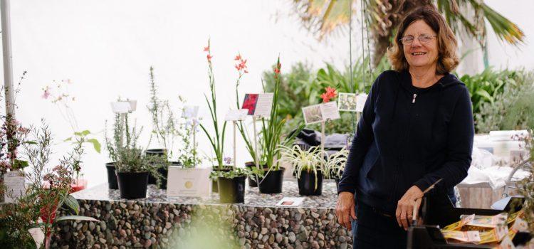 Kelnan Plants - Truro Farmers Market
