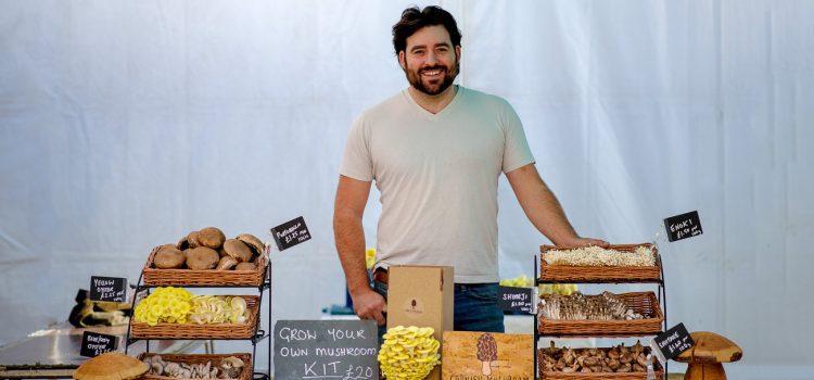 Cornish Mushrooms - Truro Farmers Market
